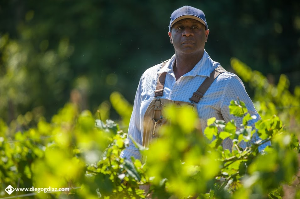 Changing Oregon's Winescape with Bertony Faustin and Abbey Creek Vineyard