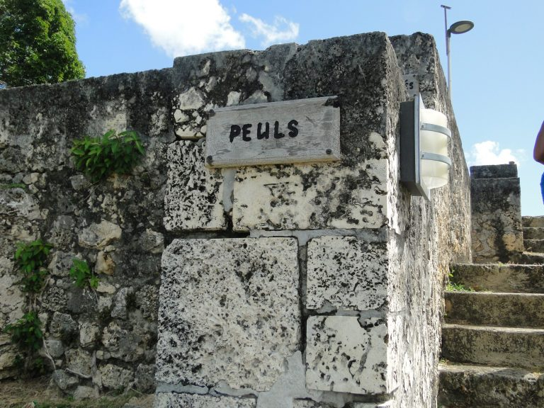 Guadeloupe Islands: Black Heritage Preserved in History and Culture