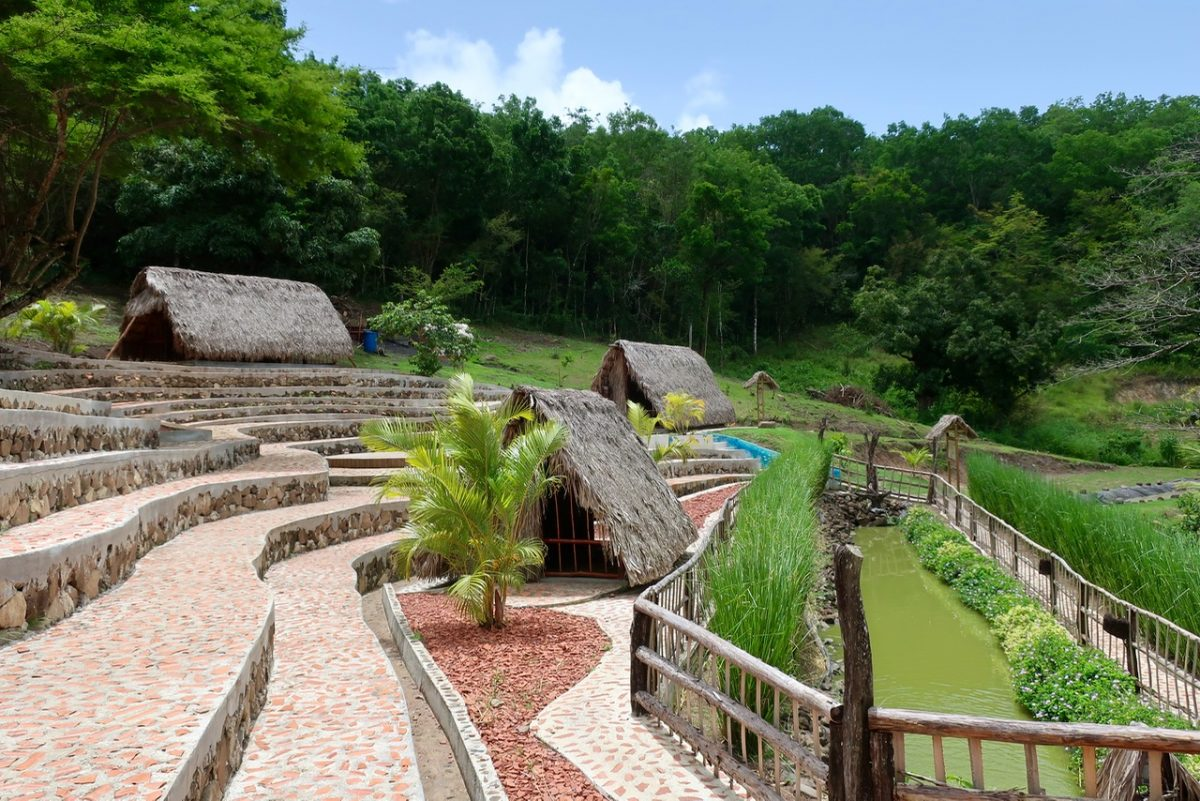 The Savannah of the Slaves in Martinique