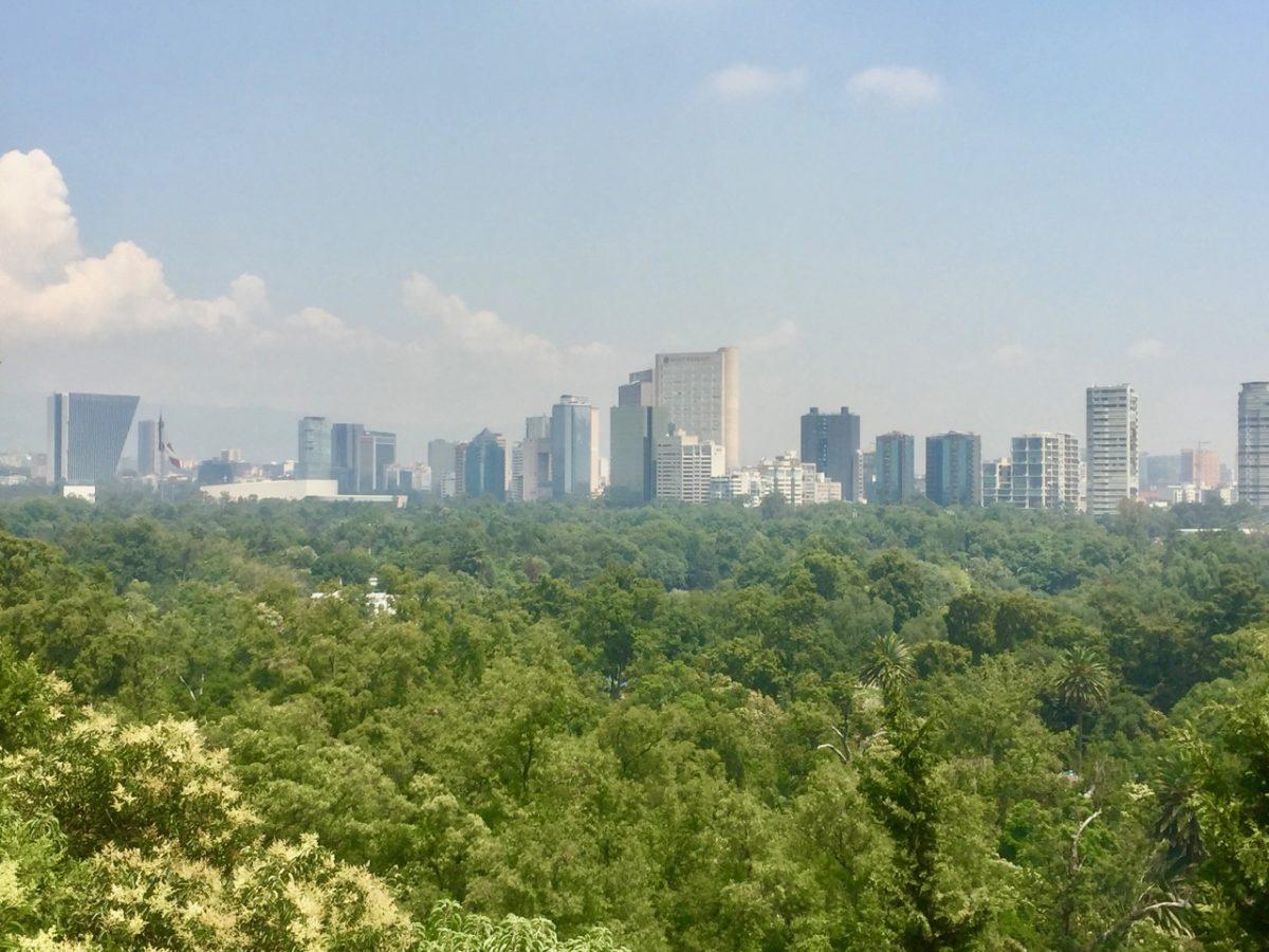 Mexican City Skyline