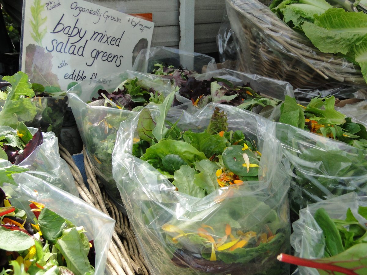 Organic baby mixed salad greens