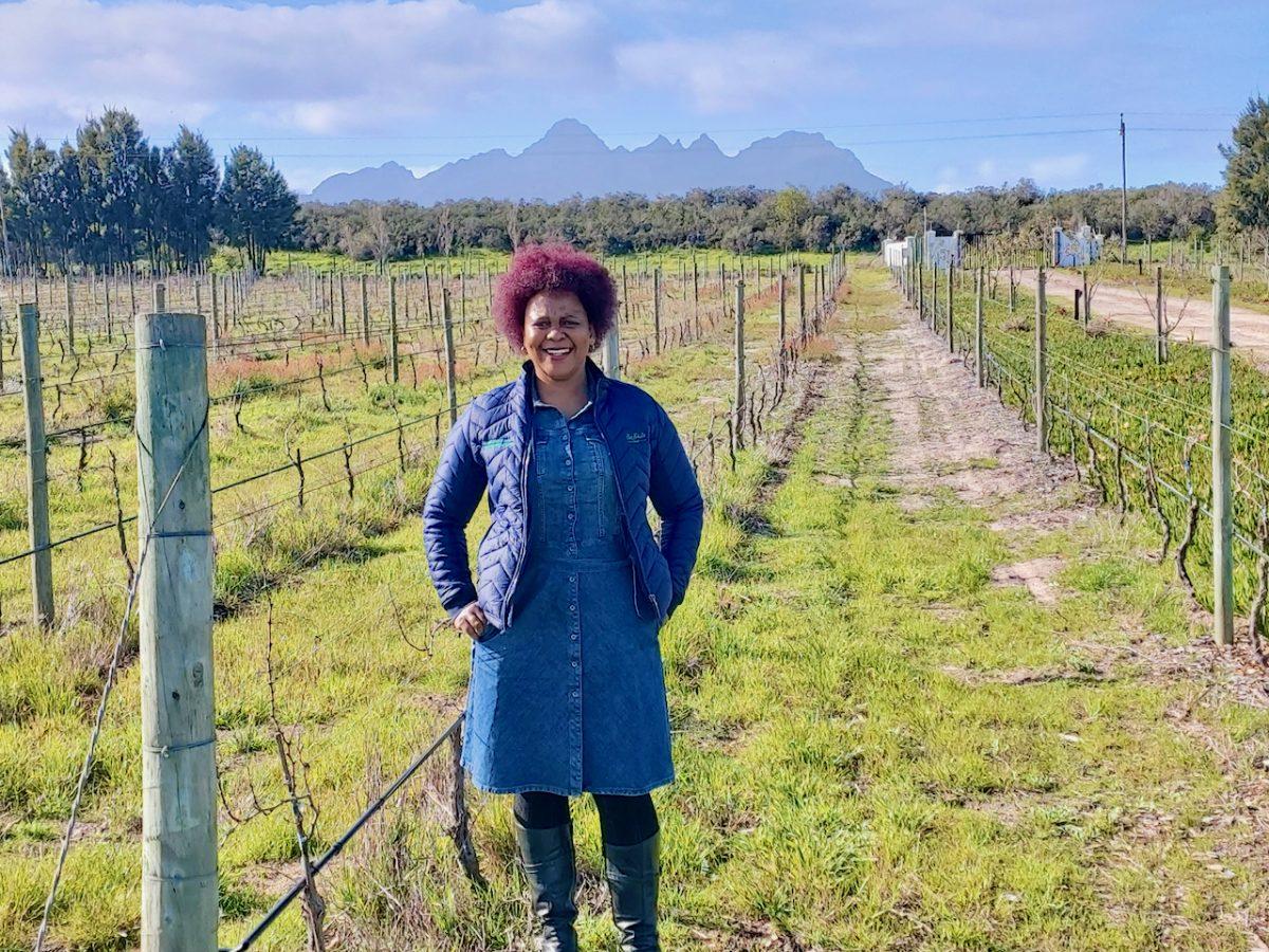 Nondumiso Pikashe in the vineyards