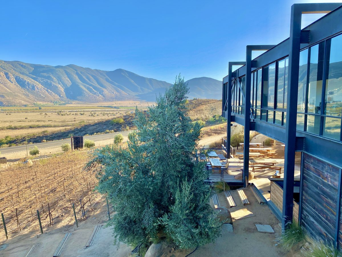 Encuentro Guadalupe winery