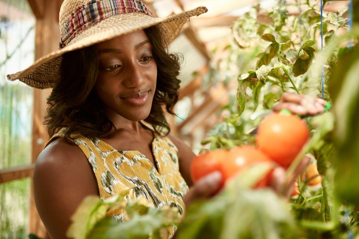 Best Ways to Garden Year-Round for Fresh Produce