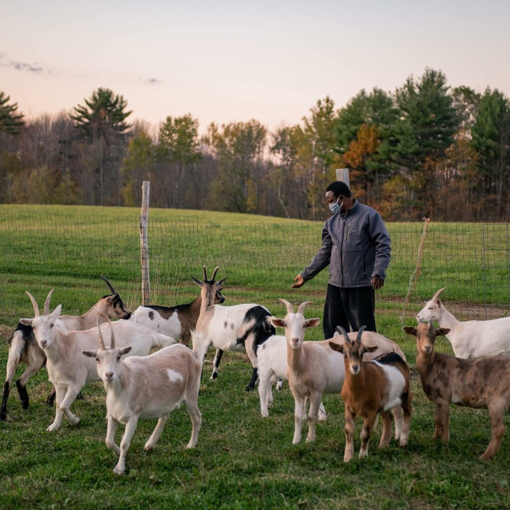 Somali-Born Visionary Leads Food and Economic Sovereignty in Maine