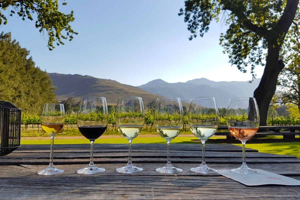 Four of the Most Underrated Wine Countries to Visit